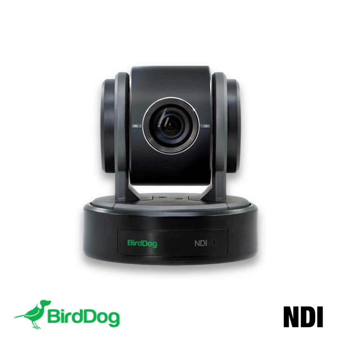 BirdDog NDI camera