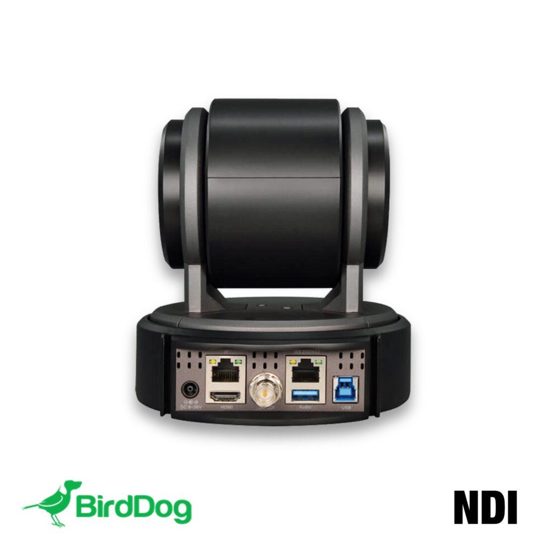 BirdDog NDI P100