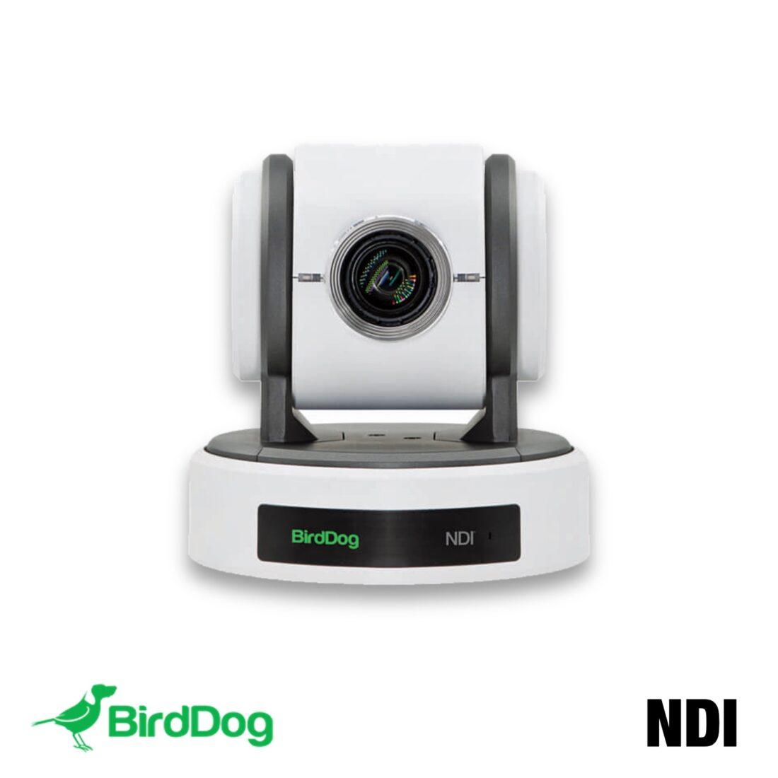 BirdDog P100 White